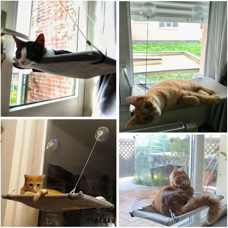 hamac de fen tre pour chat mon chat ador. Black Bedroom Furniture Sets. Home Design Ideas